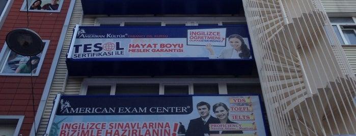 Amerikan Kültür Yabancı Dil Kursu is one of Mustafaさんのお気に入りスポット.