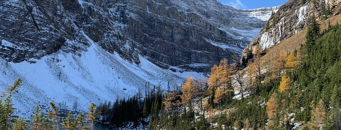 Lake Agnes is one of Alberta - Wild Rose Country.