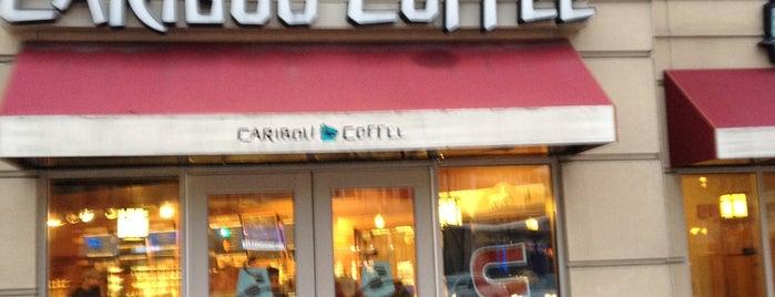 Caribou Coffee is one of Carlos 님이 좋아한 장소.