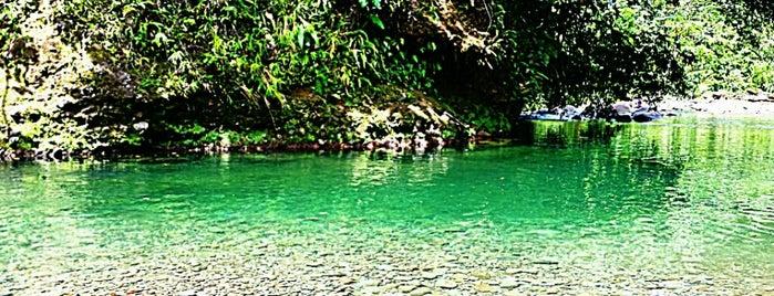 Cascades aux Ecrevisses is one of Martinique & Guadeloupe.