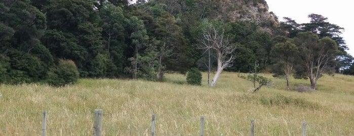 Tokatoka Peak is one of New Zealand 🗺⛰🏔🏞🌄🌅🌇🏙.