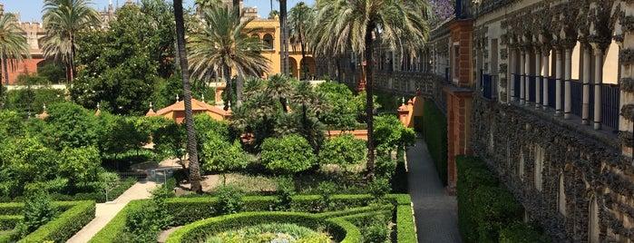 Jardines de los Reales Alcázares is one of Sevilla.