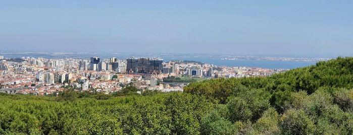 Panorâmico De Monsanto is one of Lisboa.