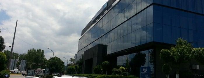 BBVA Bancomer is one of Orte, die Belen Marisol gefallen.