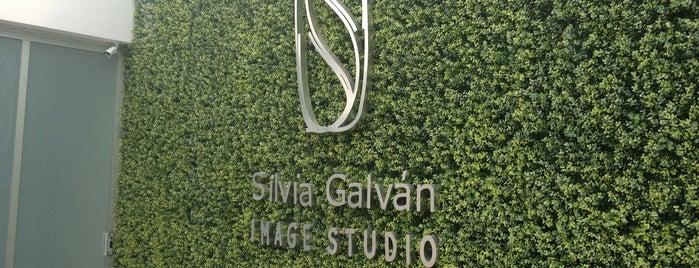 Silvia Galvan Image Studio, Lomas is one of Locais curtidos por Monica.