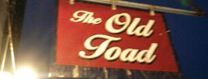 The Old Toad is one of Best Vegan Eats in Rochester.