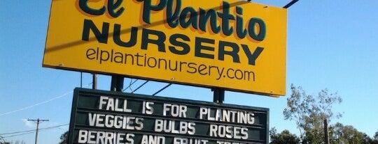 El Plantio Nursery is one of สถานที่ที่ Sarah ถูกใจ.