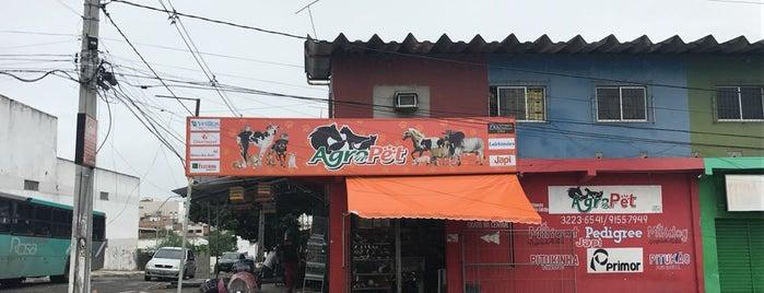 Bem Brasil Hostels Party is one of Tempat yang Disukai Rodrigo.