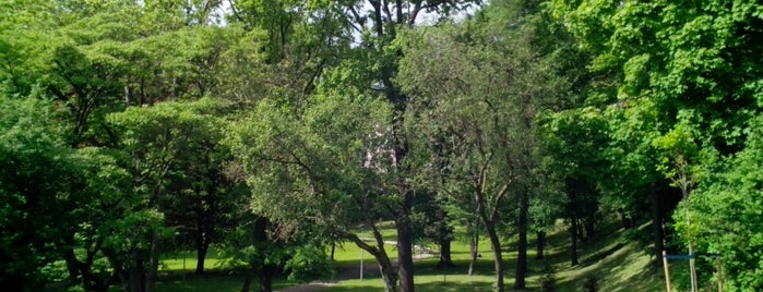 Hirvepark is one of to do in Tallinn.