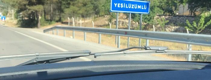 Yeşilüzümlü is one of muğla.