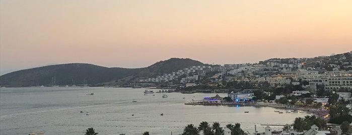 Lugares guardados de Uğurcan