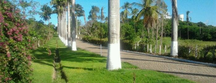 Gloria do Goitá is one of Pontos de localização.