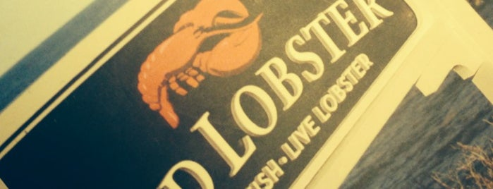 Red Lobster is one of Marco'nun Beğendiği Mekanlar.