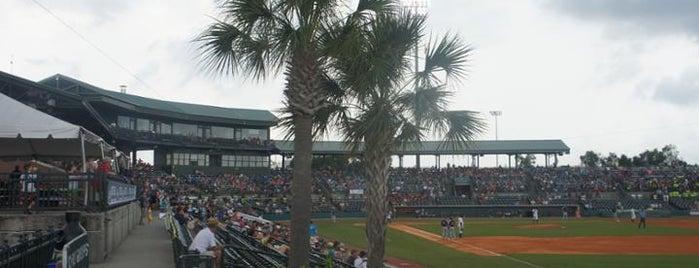 Joseph P Riley Jr Park is one of Minor League Ballparks.
