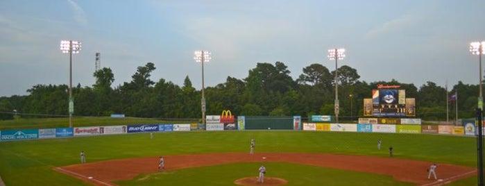 Hank Aaron Stadium is one of Minor League Ballparks.