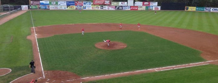 Russell E Diethrick Jr Park is one of Minor League Ballparks.