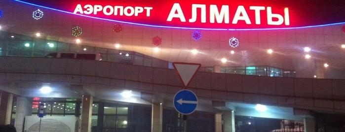 International Departure Lounge / Зал вылета международных рейсов is one of Orte, die Danila gefallen.