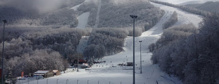 3-5 Pigadia Ski Center is one of MVP 님이 저장한 장소.