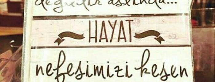 yıldızgillerin evi;) is one of Lieux qui ont plu à Emre.