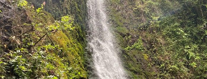 Lulumahu Falls is one of 🤙🏻🌈.