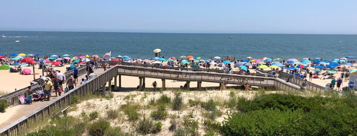 Indian River Beach - Delaware Seashore State Park is one of Kellyさんのお気に入りスポット.
