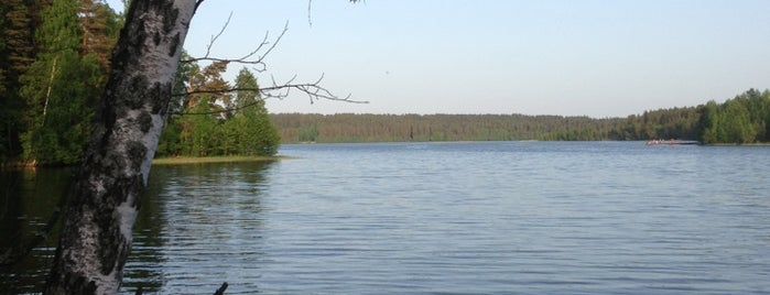Уловное озеро is one of Tempat yang Disukai Андрей.