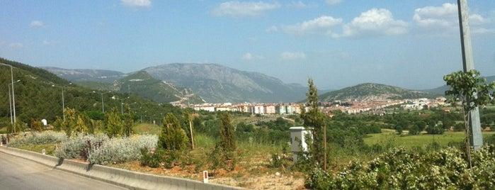 Aydın - Muğla Yolu is one of muğla 14.