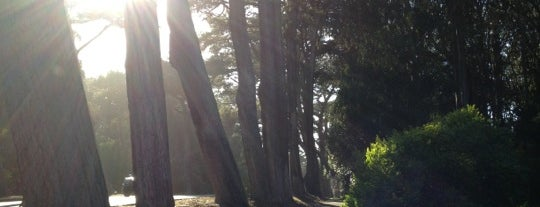 Golden Gate Park is one of Great City Parks in the United States and Canada.
