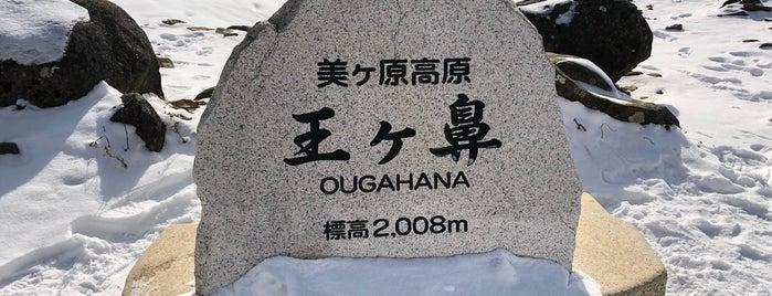Ougahana is one of Lugares favoritos de 西院.