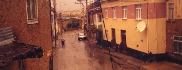 Hüyük is one of Konya'nın İlçeleri.