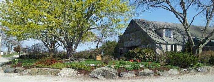Carolyn's Sakonnet Vineyard is one of Rhode.