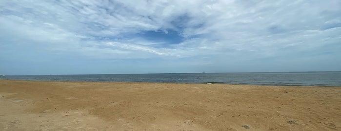 Ocean View Beach is one of Orte, die Dawn gefallen.