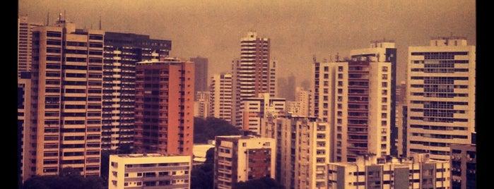 Espinheiro is one of TIMBETALAB.