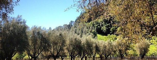 Spring Mountain Vineyard is one of Napa Valley Favorites.