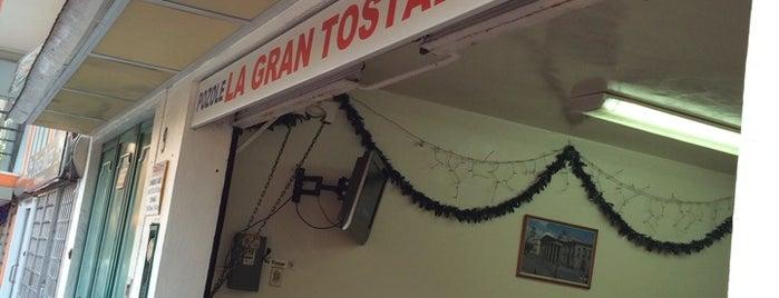 La Gran Tostada is one of สถานที่ที่ Evelyn ถูกใจ.