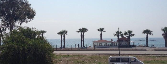 Efsane Tırak Köy Kahvaltısı is one of Orte, die TC Yağmur gefallen.