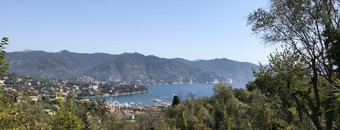 Parco di Portofino is one of Deniz 님이 좋아한 장소.