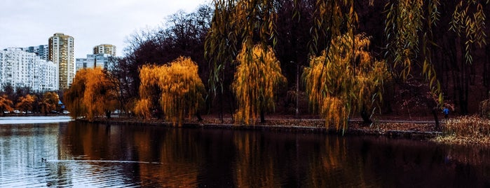 Голосіївський парк ім. Максима Рильського is one of Beauty.