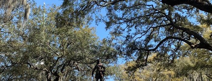 Savannah Dan Tour is one of Best of Savannah.