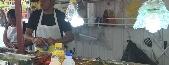 Tacos de Guisado is one of TglPtrn'ın Beğendiği Mekanlar.