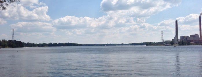 Lake Springfield is one of Posti che sono piaciuti a Janel.
