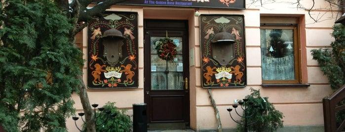 Під Золотою Розою is one of Lviv.