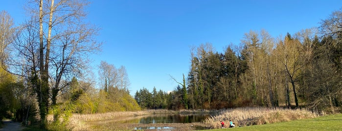 Great parks in the Puget Sound