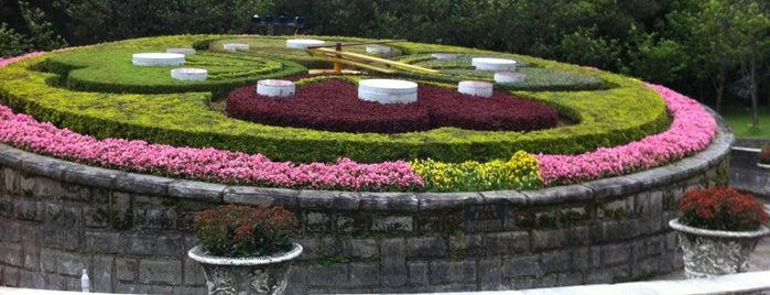 陽明山花鐘 Flower Clock is one of Taiwan Maybe.