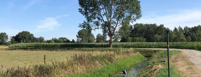 De Zeelsen Dijk is one of สถานที่ที่ Kayla ถูกใจ.