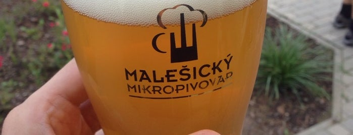 Malešický mikropivovar is one of Austinさんのお気に入りスポット.