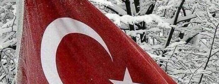 Karacaköy Meydanı is one of Posti che sono piaciuti a Aylin.