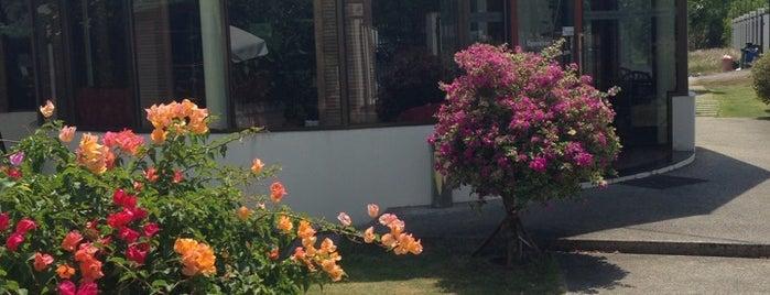 Watermark Patisseries is one of Phuket.