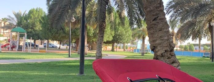 AlNakeel park is one of Locais salvos de Queen.