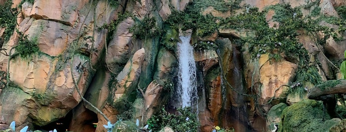 Pandora - The World of Avatar is one of Lieux qui ont plu à Priscila.